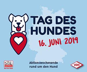 VDH - Tag des Hundes. Am 16. Juni 2019 wird der Tag des Hundes gefeiert.