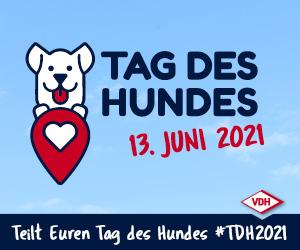 VDH - Tag des Hundes. Am 13. Juni 2021 wird der Tag des Hundes gefeiert.